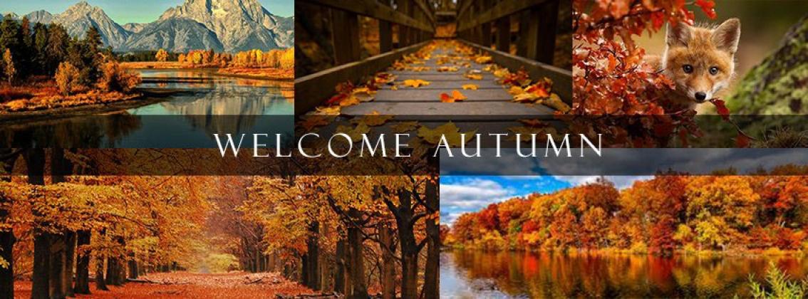 <h5>Home Builders - Autumn</h5>