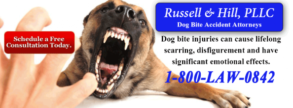 <h5>Law Firm - Dog Bite</h5>